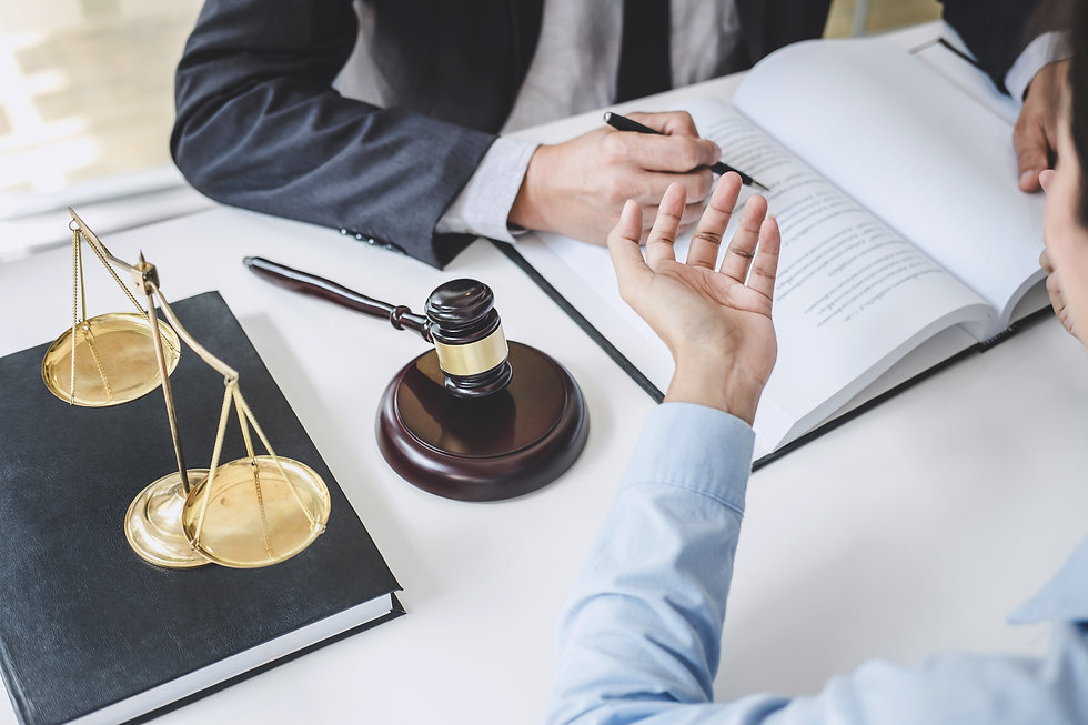consultation-and-conference-of-male-lawy