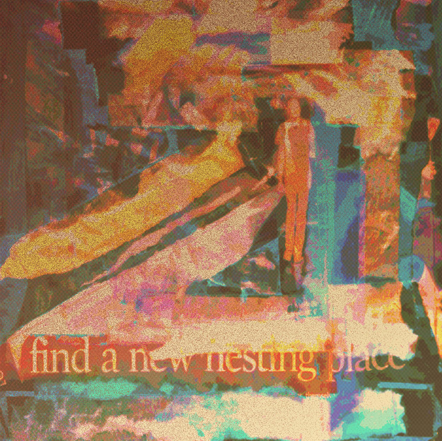 Find A New Nesting Place