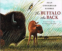 history of the buffalo for kids, books about the buffalo and indians for kids, history of the plains for kids, u.s. history for kids