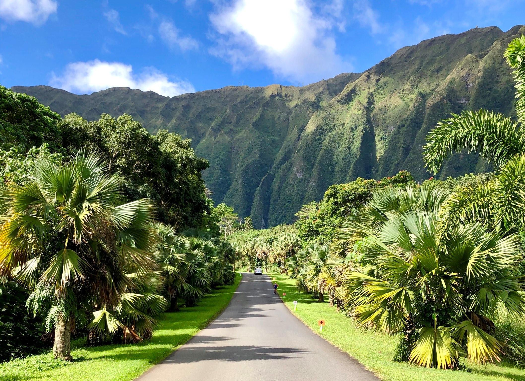 Private Oahu Nature Photo Tour