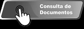 Consulta de documentos.png