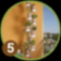 Vertical garden best solution