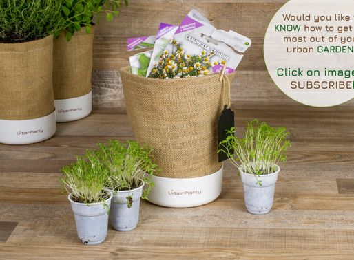 Get ready for the upcoming gardening season with Urban Planty!