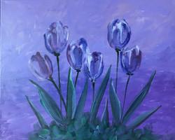Midnight_Purple_Tulips