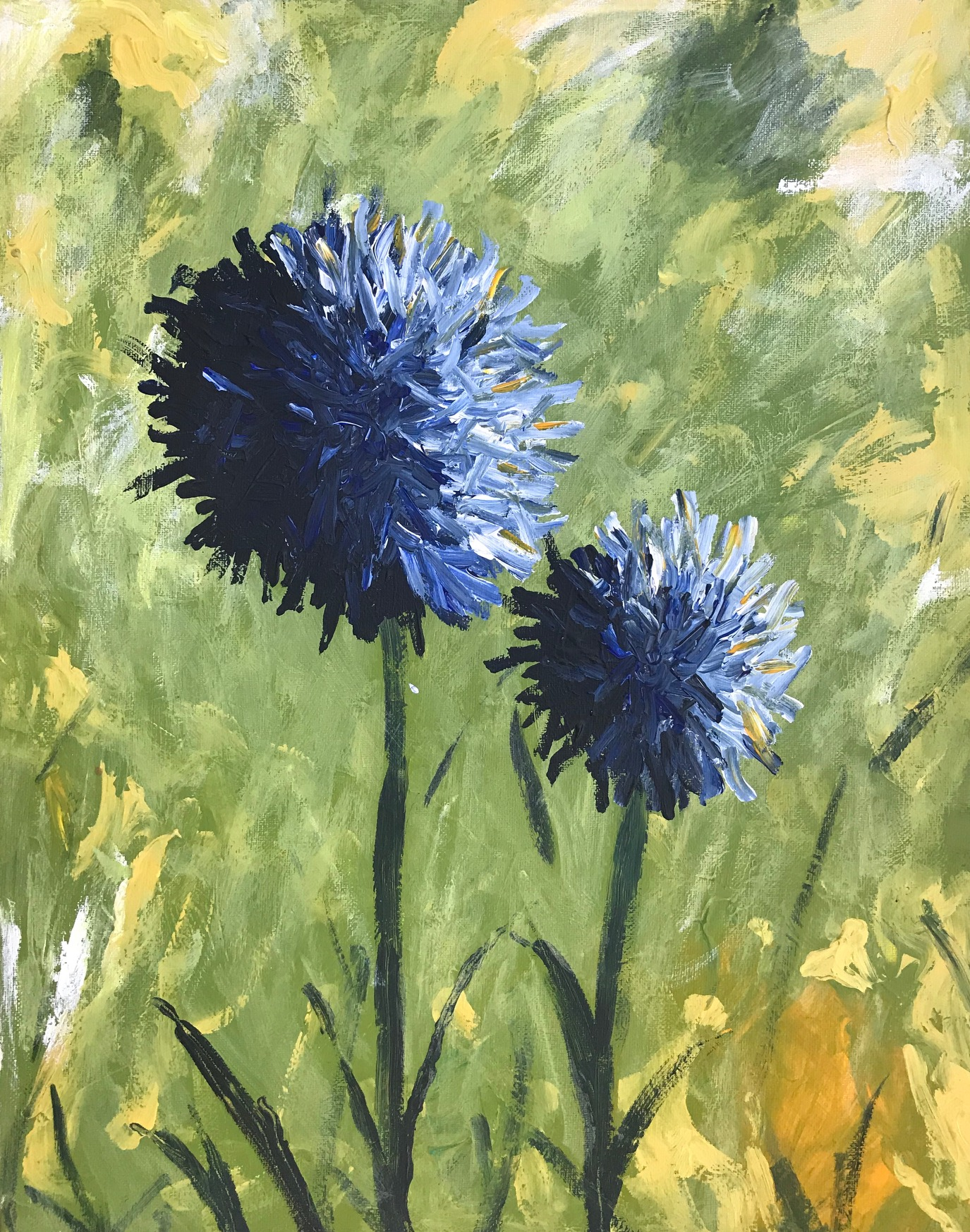 Blue_Allium_Flowers