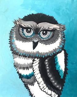Wild_Black_and_White_Owl