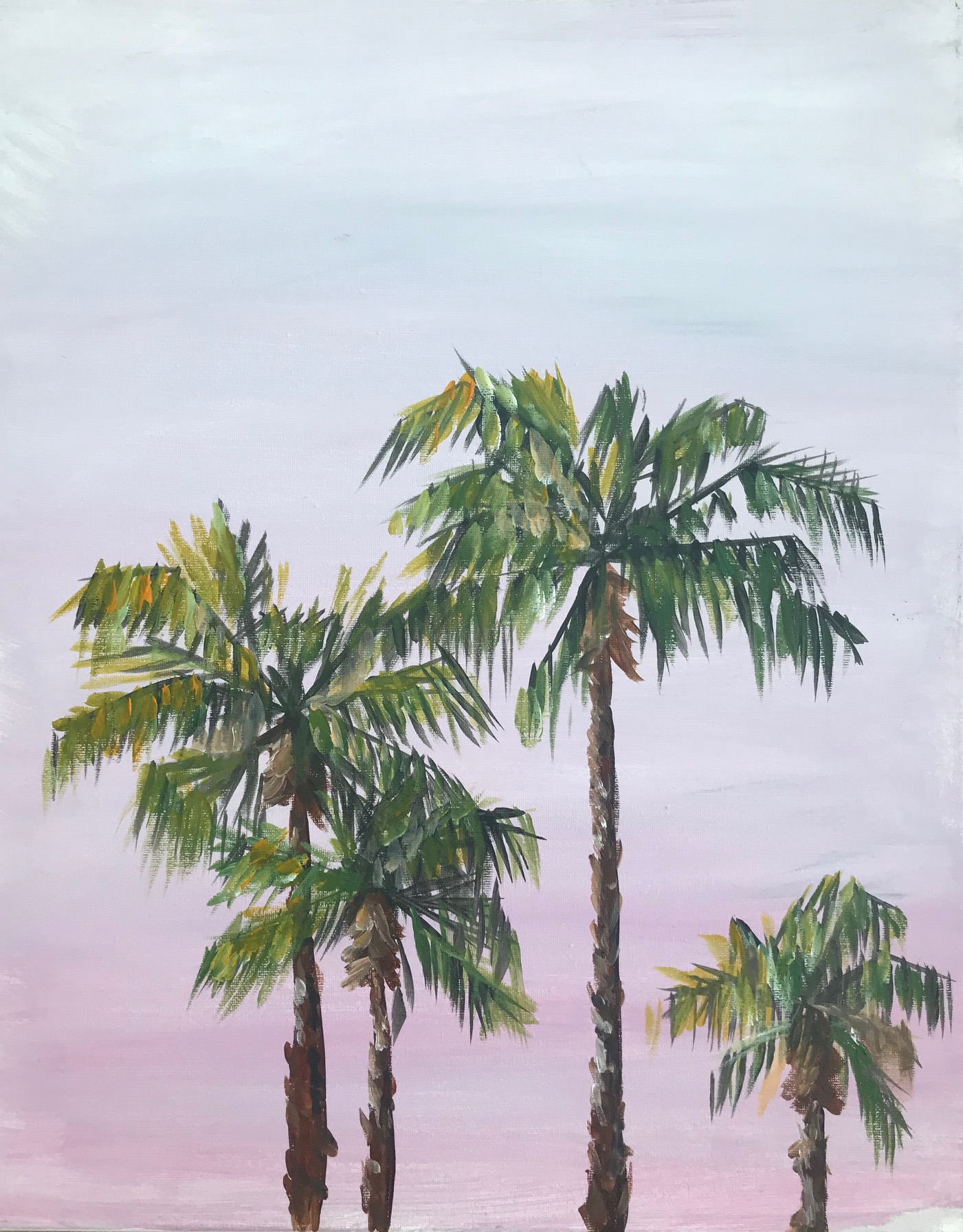 Sunrise_Palms
