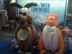 Cat and dog balloon art