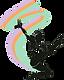 Dance-store-philadelphia-logo-transapren