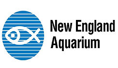 NEAQ 1 logo.jpg