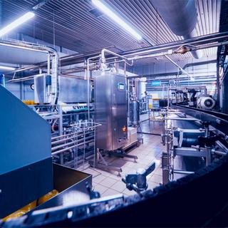 service flex manufacturing.png