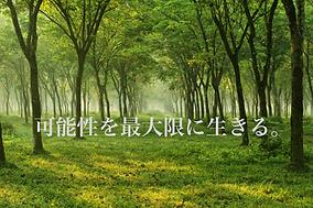スクリーンショット 2019-04-07 14.56.37.png