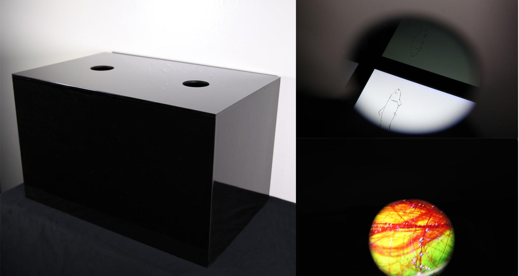 Untitled Box, installation views
