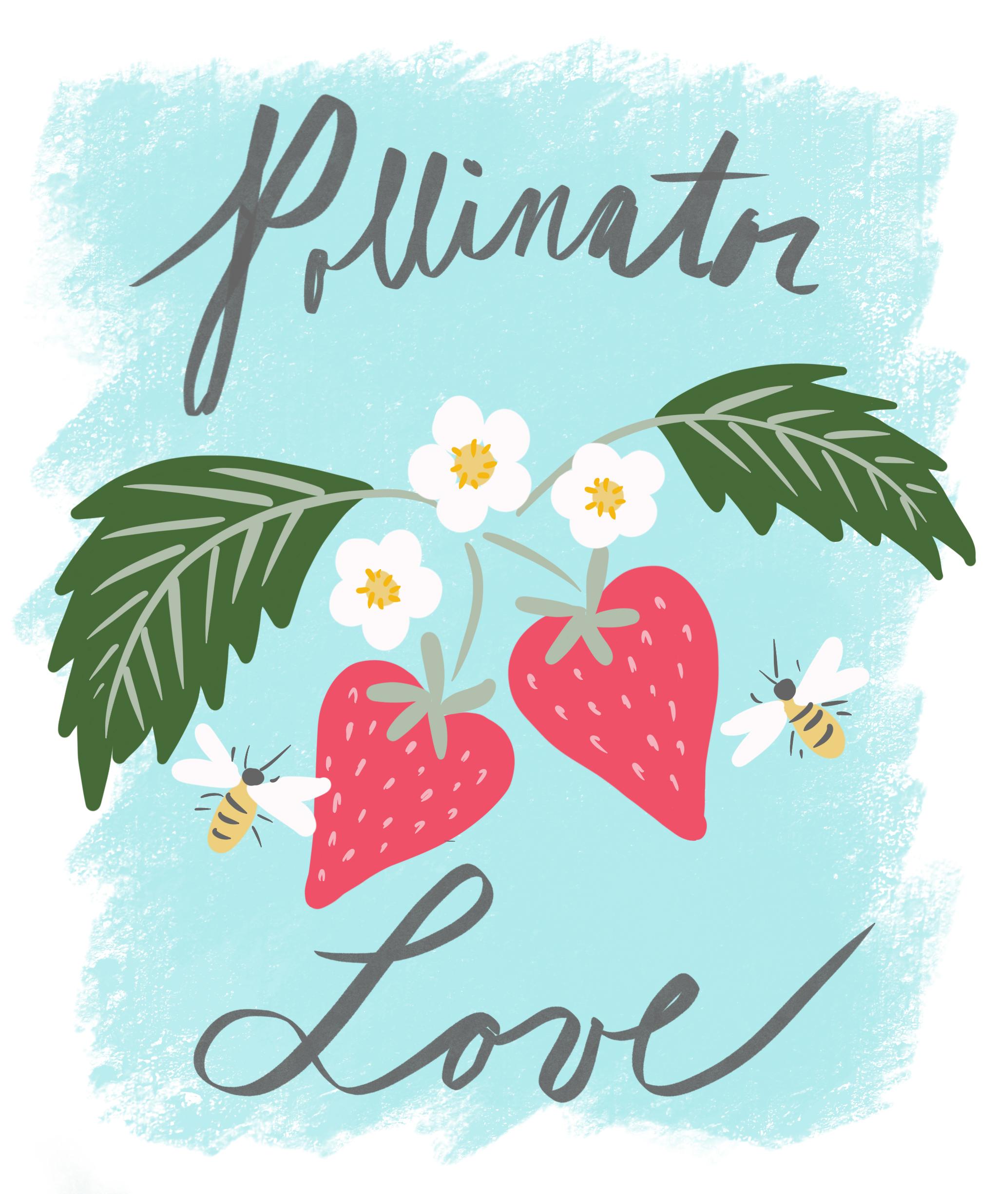 Pollinator Love_working