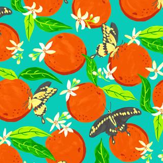 Oranges & Giant Swallowtails