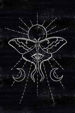 Luna Moon Moth