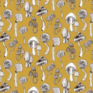 Soft Mushrooms