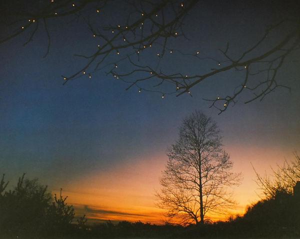 Windham Hill Winter Solstice