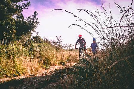 bike-biking-daylight-733739.jpg