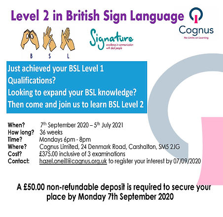 2020-2021 BSL L2 Poster.jpg