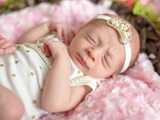 Struyf Newborn Session