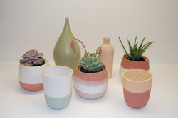 Planter_Range_with_Vases