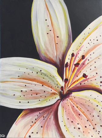 35 - Iris - Acrylic on Canvas - 2019 - 9x12