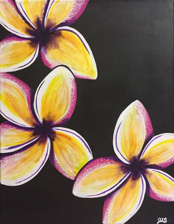 31 - Plumeria 1 - Acrylic on Canvas - 2019 - 9x12