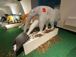 Exposição Tamanduá: Uma história pra contá
