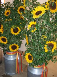 Raumdekoration Sonnenblumen1