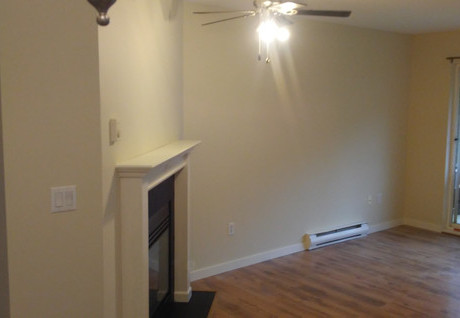 Ceiling, Walls, Fireplace and Trim Paint