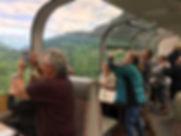 Denali Train HC .jpg