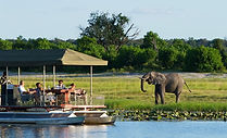 chobe-game-lodge-drinks-on-boat-with-ele
