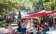 stellenbosch-fresh-goods.jpg
