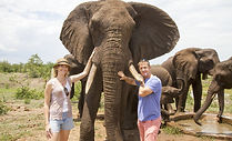 elephantencounter.jpg