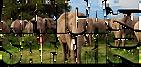 africasafari2021.png