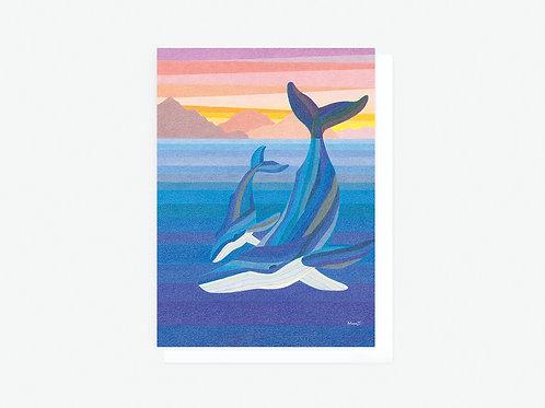 Humpback Whales II - Greeting Card