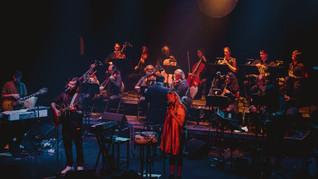 Webdiffusion | Dear Criminals avec orchestre de chambre