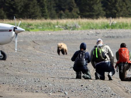 THE Best Way To View Alaska's Brown Bears!