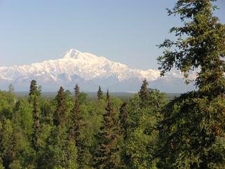 Denali From Talkeetna Alaskan Lodge