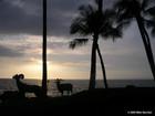 Sunset at Waikoloa Village
