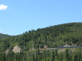 Train Along Parks Highway