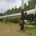 Alaska Pipeline at Gold Dredge 8