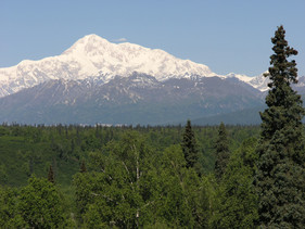 Denali Viewpoint South