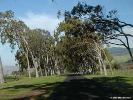 Parker Ranch Entrance