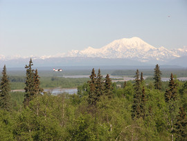 Denali From Talkeetna Alaskan Lodge