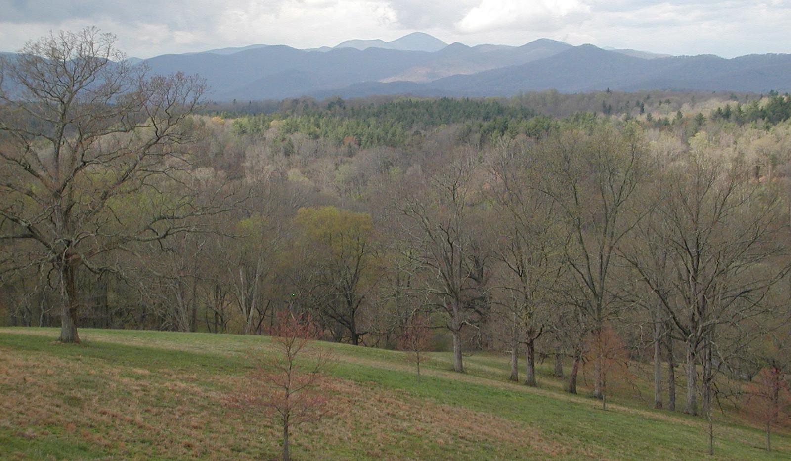 Mountains Surrounding Asheville