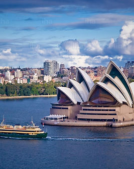 Sydney-pera-de-sidney.jpeg