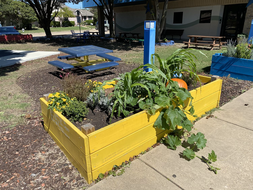 Yellow Raised Bed