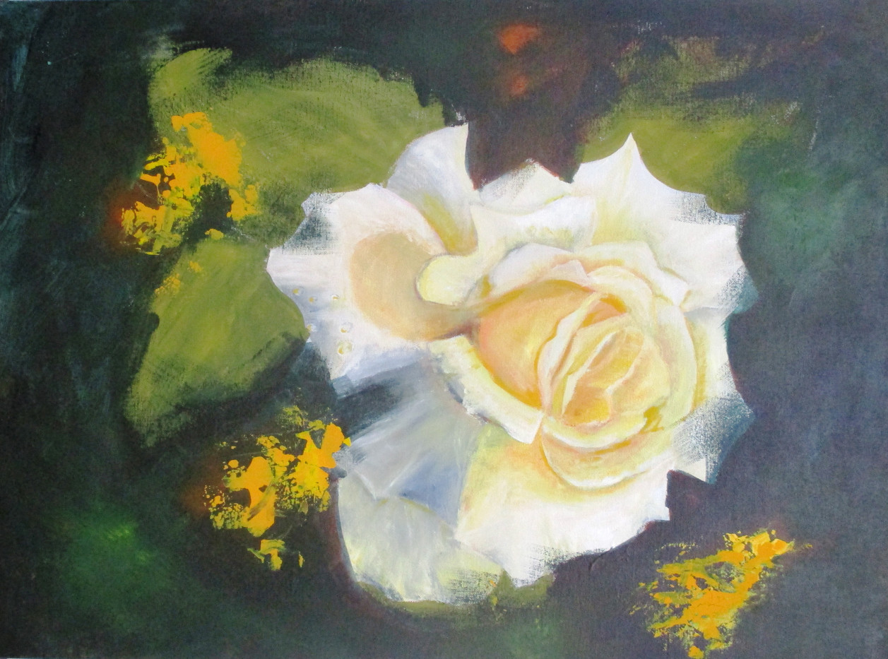 Shattered white and cream rose